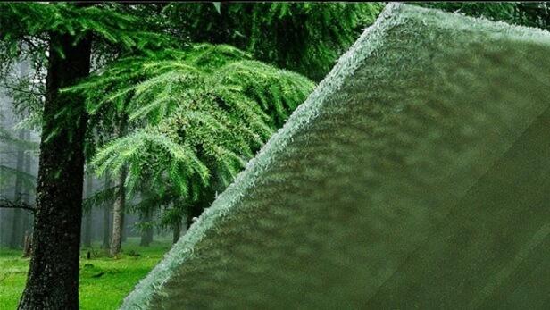подкладка под линолеум из хвои в лесу у елки