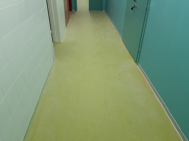 Антибактериальный коммерческий линолеум в коридоре медицинского учреждения